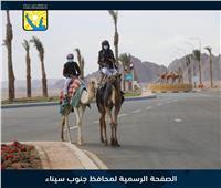 جنوب سيناء تحتفل بالذكرى الأولى لافتتاح مضمار الهجن الدولي