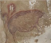 اكتشاف لوحة لخنزير يعود تاريخها لأكثر من 45 ألف عام