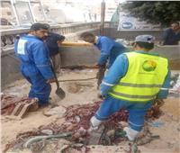 شمال سيناء في 24 ساعة  منح صفة الضبطية القضائية لرؤساء مجالس المدن