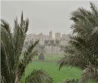 «الزراعة» تصدر نصائحها لحماية المحاصيل خلال موجة الطقس السيء