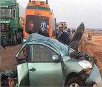 المنيا في أسبوع  عامل يقتل شقيقته لشكه في سلوكها.. مصرع وإصابة 154 شخصاً