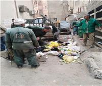 حملة مكبرة لإزالة القمامة والإشغالات في قرى المنيا.. صور