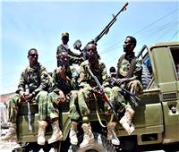 الجيش الصومالي يعتقل عناصر من ميليشيا الشباب المتمردة