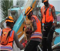 إندونيسيا تكافح الكوارث وعدد قتلى الزلزال يرتفع إلى 73