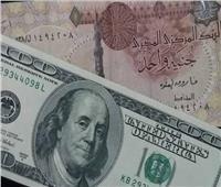 استقرار الدولار أمام الجنيه.. والسعر يسجل 15.61 جنيه في 3 بنوك