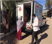 رئيس قرى أبو سمبل تتفقد منافذ بيع اللحوم المتنقلة بأسوان