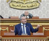 رئيس «شكاوي النواب» يهاجم وزير التموين: «الوكيل» هو من يدير الوزارة