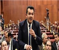 نائب عن استدعاء الحكومة: المواطن سيجد من يمثله تحت قبة البرلمان