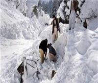 إنقاذ 6 أشخاص بعد انهيار جليدي في منتجع روسي