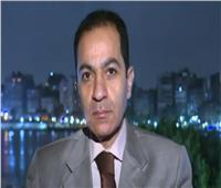 أستاذ استثمار: مؤشرات الاقتصاد المصري جيدة رغم أزمة «كورونا»