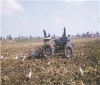 «دكرنس الزراعية» بالدقهلية .. نموذج للتعليم التطبيقي يحتاج للتعميم