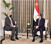 السيسي يلتقي رئيس وزراء الأردن ويؤكد تطلع مصر لتعميق العلاقات الثنائية | فيديو