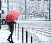 مقتل 60 شخصًا في اليابان بسبب الثلوج