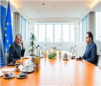 «عبد السلام»: نتطلع للتعاون المشترك مع البرلمان الأوروبي لنشر قيم الأخوة الإنسانية