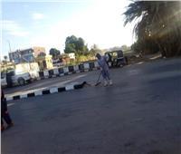 استكمال أعمال النظافة والتجميل بمدينة كلابشة