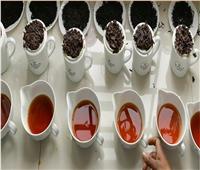 دراسة: الشاي الأسود يوقف نشاط فيروس كورونا