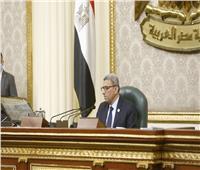 أحمد سعد الدين يرأس جلسة النواب لأول مرة ويرفع الأعمال للغد