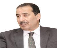 حوار | عدلي سعداوي: السيسي يدافع بقوة عن حقوق القارة السمراء