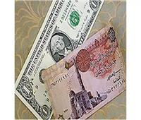 استقرار سعر الدولار أمام الجنيه المصري في بداية تعاملات اليوم