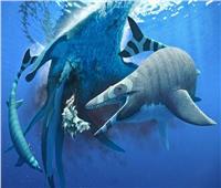 «سحلية البحر المرعبة».. جابت سواحل إفريقيا قبل 66 مليون سنة | صور