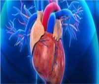 فيديو| أستاذ جراحة قلب: الحزن والفرح الشديدين يسببان تمدد الشرايين