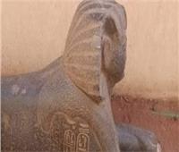 حوادث الإسماعيلية في أسبوع| إحباط محاولة بيع تمثال أثري يزن طن و700 كيلو