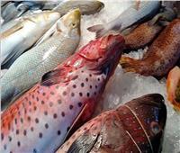أسعار الأسماك في سوق العبور اليوم 23 يناير