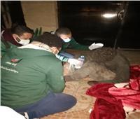 فريق «بلا مأوى» ينقذ أحد ذوي الاحتياجات الخاصة وينقله لمستشفى العباسية | صور
