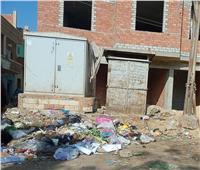 «الشوارع سد والقمامة أكوام».. الإهمال والعشوائية تحاصران سمسطا| صور