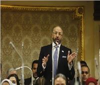 النائب حسام المندوه: الفن قوة مصر الناعمة ولا يجب الالتفات لمن يتنقصون من قيمة الفنانين