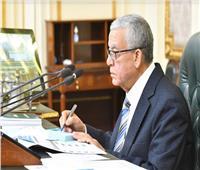 البرلمان يشطب «الباشا والبك» لمحمد أبو العينين وأحمد سعد من المضبطة