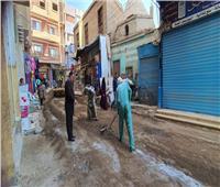 استمرار حملات النظافة وتمهيد الشوارع بالمنيا  صور