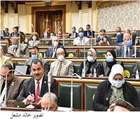 برلمانية لوزير الزراعة: لا توجد سياسة زراعية في مصر