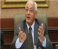 على الدين هلال: هذه أسباب نجاة مصر من مصير دول الربيع العربي