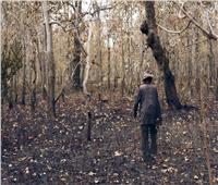 تاه في الغابة 18 يوما ..كيف أنقذ «الفطر» حياة إسترالي؟
