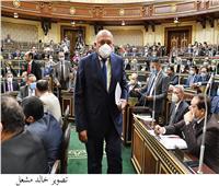 وزير الخارجية من البرلمان: العلاقات المصرية مع روسيا تشهد تطورا كبيرا