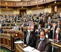 وكيل البرلمان يطالب «الخارجية» باستصدار قانون دولي يرفض الإساءة للأديان والرسل