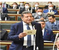 برلماني: أرفض تدخل الكونجرس في شأننا الداخلي وما يحدث محاولة للضغط على مصر