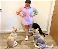 ابنة عمرو دياب تنشر صورة مع كلابها: «لقاء العائلة»