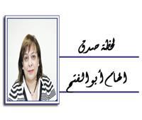 نريد «عين القاهرة» حارسة وليست مدمرة !