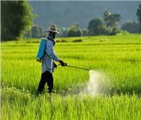 بالأرقام..الزراعة تعلن مبيدات الآفات الزراعية المسجلة والمتداولة في مصر