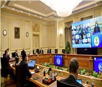 الحكومة توافق على مشروع قانون بدمج صندوق تحسين الأقطان المصرية