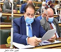 «وكيل البرلمان» يدعو لإنشاء صندوق طوارئ لدعم الأدباء والمفكرين
