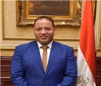 نائب: تدخلات الكونجرس الأمريكي غير مقبولة.. والمكاسب لن تكون على حساب مصر