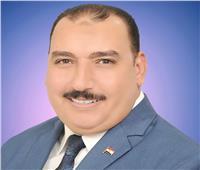جمال عبد المطلب نقيباً لـ«الاجتماعيين» ببني سويف