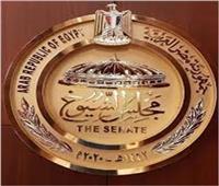 برلماني: تنظيم مصر للبطولات الرياضية العالمية أبهر العالم