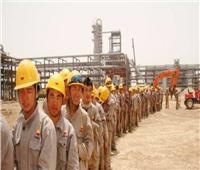 إيرادات تراخيص تصل إلى 175 مليونا.. ضوابط عمل الأجانب في مصر
