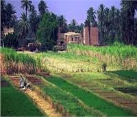 «بوابة أخبار اليوم» تواصل رصد انطلاقة المبادرة الرئاسية لمشروع تطوير القرى
