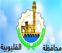 """القليوبية في 24 ساعة  افتتاح مستشفى كفر شكر.. وتطوير شارع """"عراب"""""""