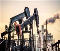 استقرار أسعار النفط العالمية.. و55.57 دولار للبرميل